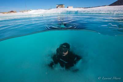 LAme bleue arctique 14GD